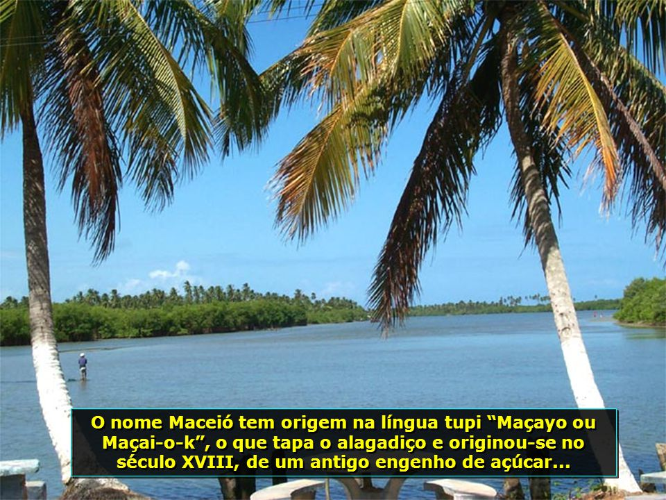 P0008281 - MARECHAL DEODORO - LAGOA MANGUABA - COQUEIRO TORTO