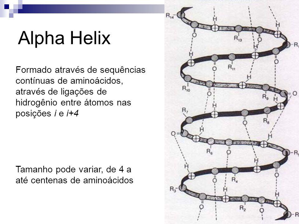 Alpha Helix Formado através de sequências contínuas de aminoácidos, através de ligações de hidrogênio entre átomos nas posições i e i+4.
