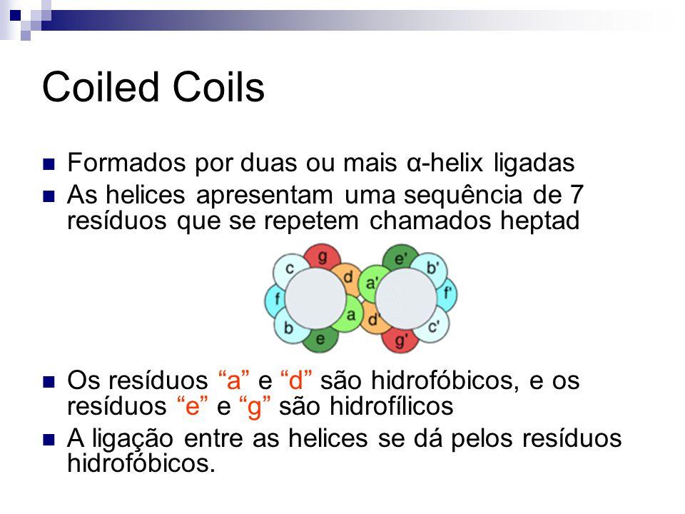 Coiled Coils Formados por duas ou mais α-helix ligadas