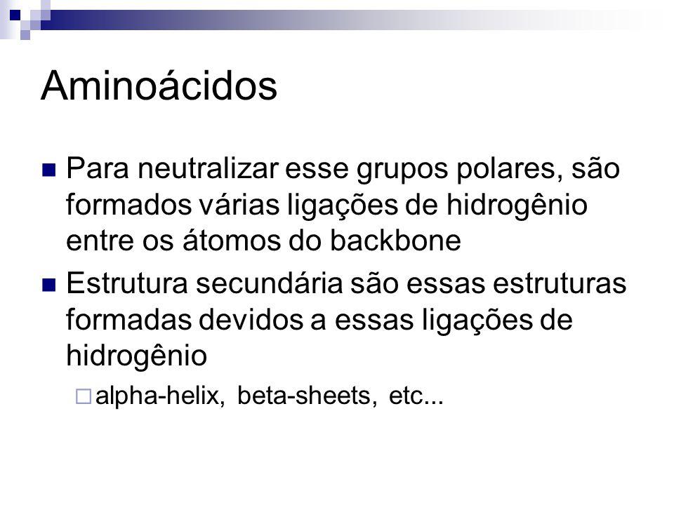 Aminoácidos Para neutralizar esse grupos polares, são formados várias ligações de hidrogênio entre os átomos do backbone.