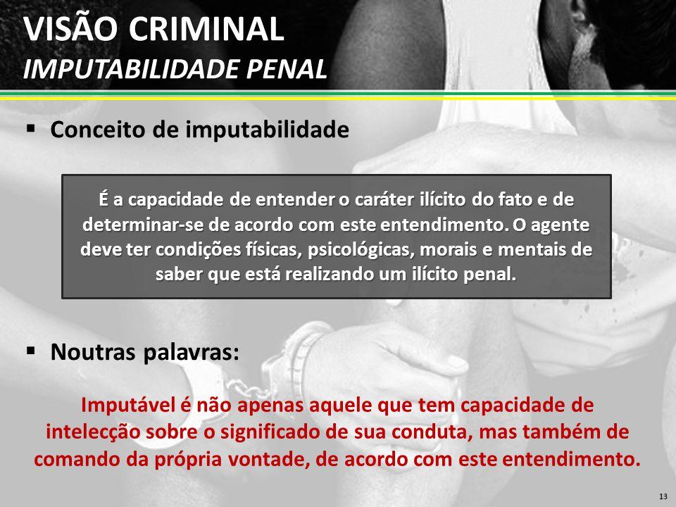 VISÃO CRIMINAL IMPUTABILIDADE PENAL