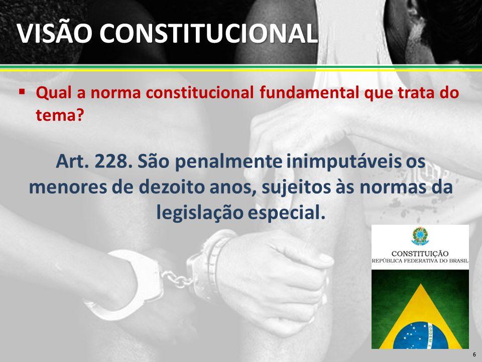 VISÃO CONSTITUCIONAL Qual a norma constitucional fundamental que trata do tema