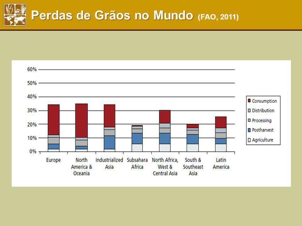 Perdas de Grãos no Mundo (FAO, 2011)
