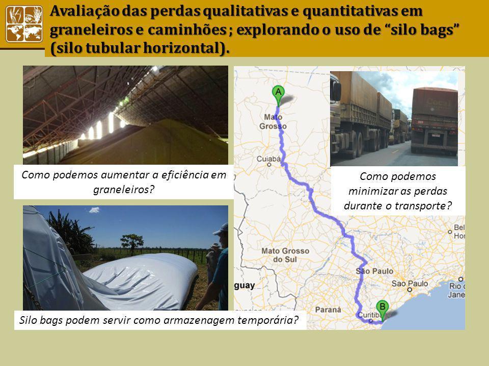Avaliação das perdas qualitativas e quantitativas em graneleiros e caminhões ; explorando o uso de silo bags (silo tubular horizontal).