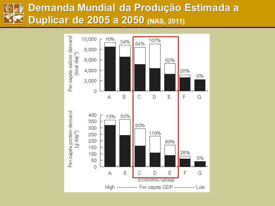 Demanda Mundial da Produção Estimada a Duplicar de 2005 a 2050 (NAS, 2011)