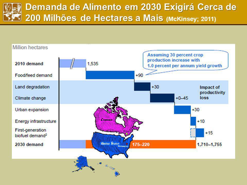 Demanda de Alimento em 2030 Exigirá Cerca de 200 Milhões de Hectares a Mais (McKinsey; 2011)