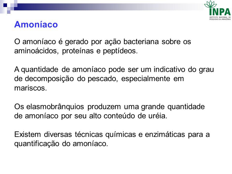Amoníaco O amoníaco é gerado por ação bacteriana sobre os aminoácidos, proteínas e peptídeos.