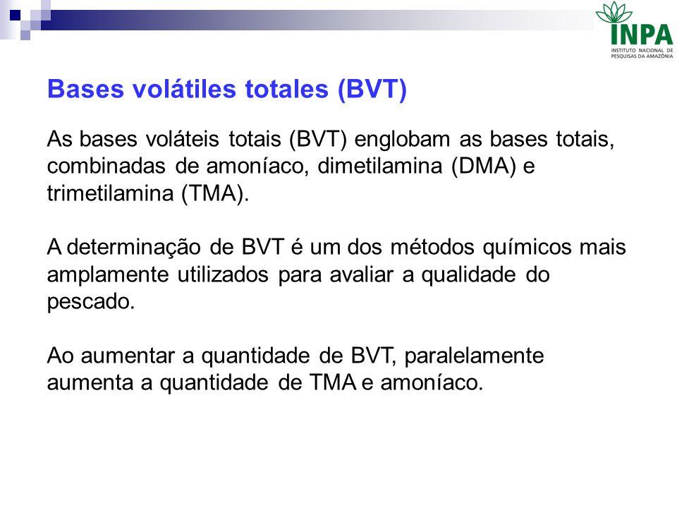 Bases volátiles totales (BVT)