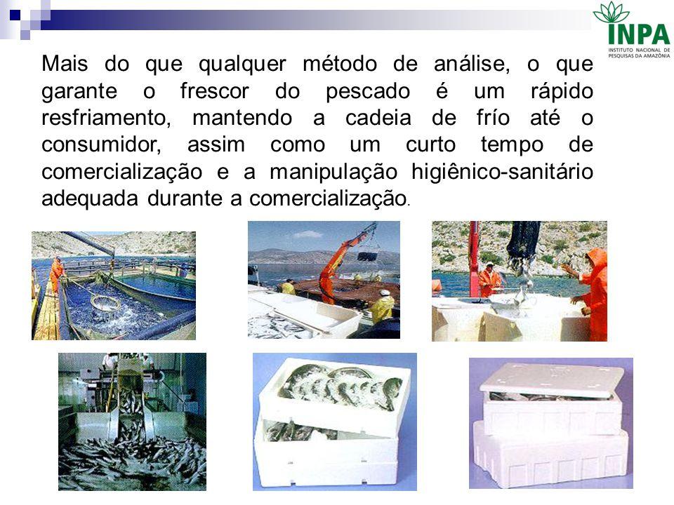 Mais do que qualquer método de análise, o que garante o frescor do pescado é um rápido resfriamento, mantendo a cadeia de frío até o consumidor, assim como um curto tempo de comercialização e a manipulação higiênico-sanitário adequada durante a comercialização.