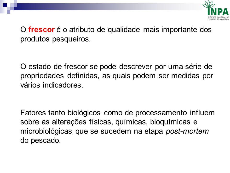 O frescor é o atributo de qualidade mais importante dos produtos pesqueiros.