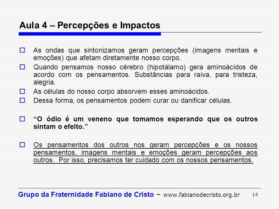 Aula 4 – Percepções e Impactos