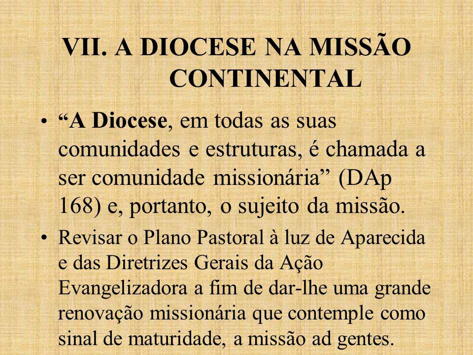 VII. A DIOCESE NA MISSÃO CONTINENTAL