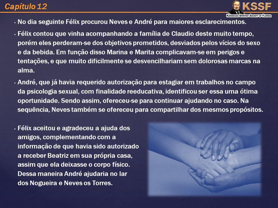 Capítulo 12 No dia seguinte Félix procurou Neves e André para maiores esclarecimentos.