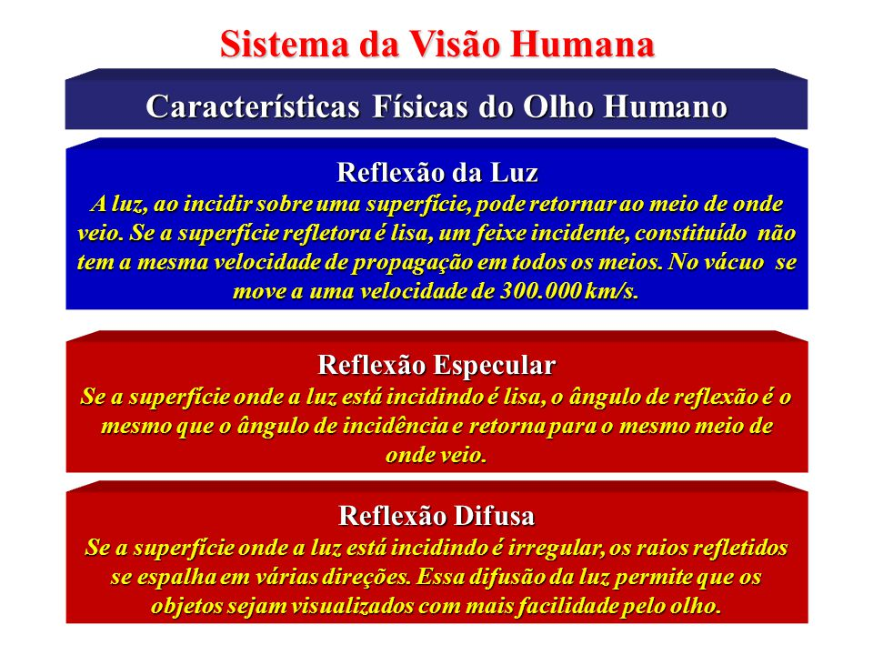 Sistema da Visão Humana Características Físicas do Olho Humano