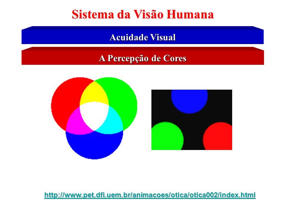 Sistema da Visão Humana