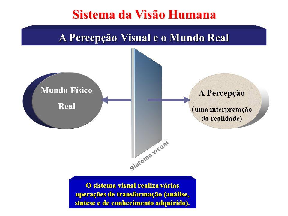 Sistema da Visão Humana A Percepção Visual e o Mundo Real