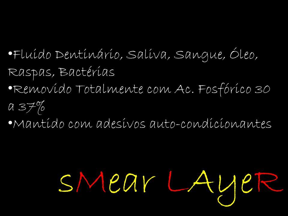 sMear LAyeR Fluido Dentinário, Saliva, Sangue, Óleo, Raspas, Bactérias