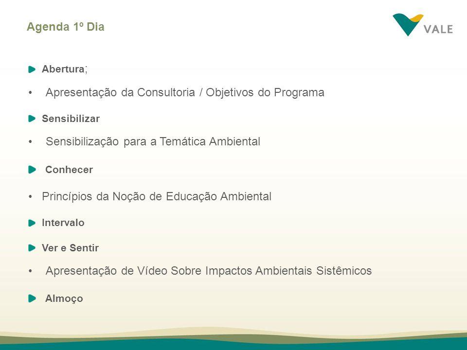 Apresentação da Consultoria / Objetivos do Programa