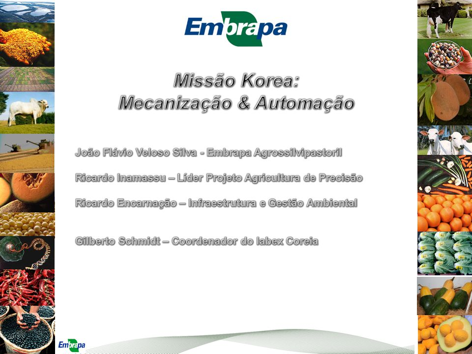 Mecanização & Automação