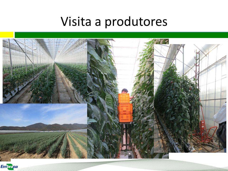Visita a produtores