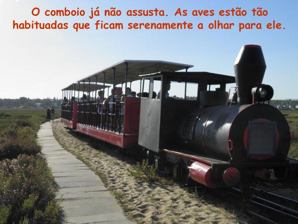 O comboio já não assusta