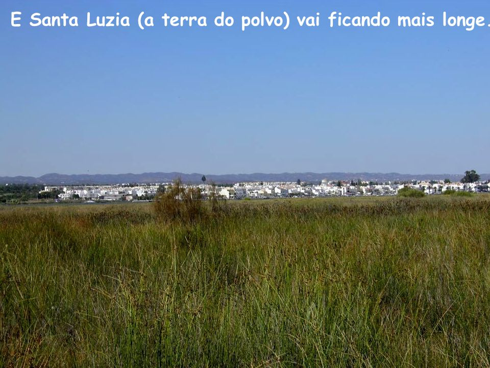 E Santa Luzia (a terra do polvo) vai ficando mais longe.