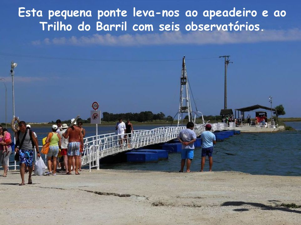 Esta pequena ponte leva-nos ao apeadeiro e ao Trilho do Barril com seis observatórios.