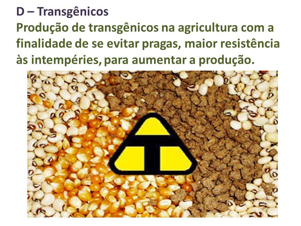 D – Transgênicos