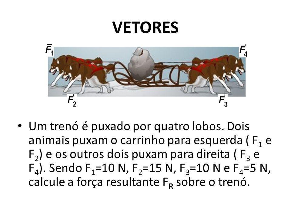 VETORES