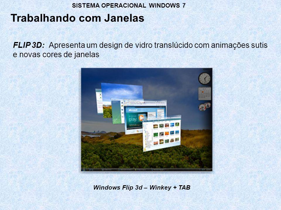 Windows Flip 3d – Winkey + TAB
