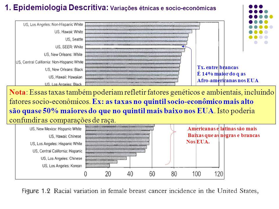 1. Epidemiologia Descritiva: Variações étnicas e socio-econômicas