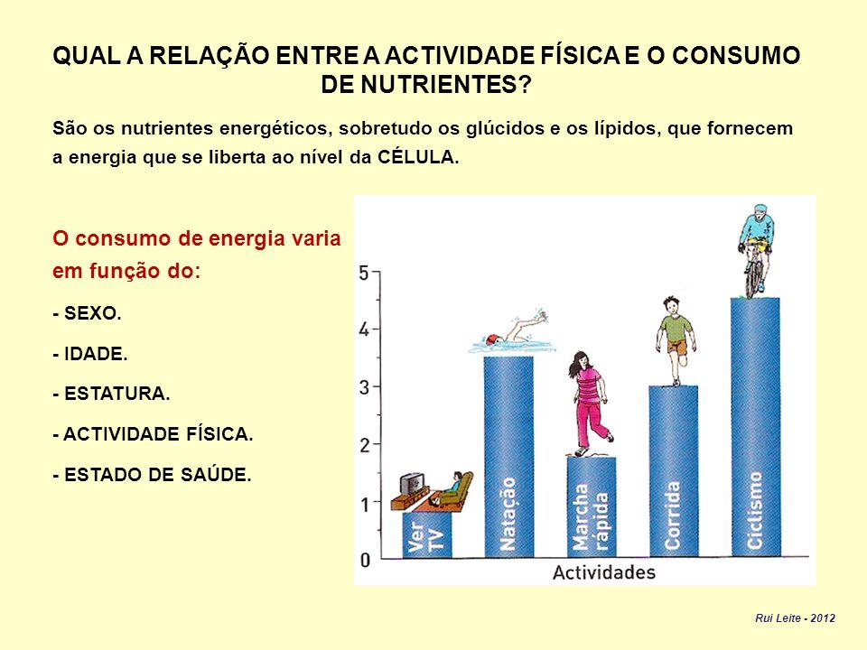 QUAL A RELAÇÃO ENTRE A ACTIVIDADE FÍSICA E O CONSUMO DE NUTRIENTES
