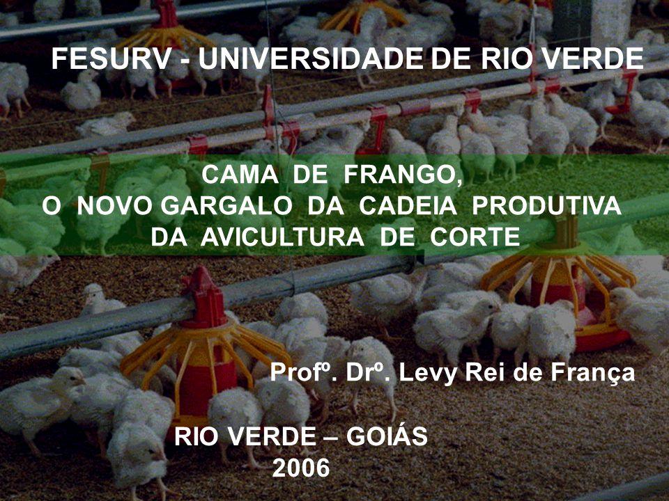 FESURV - UNIVERSIDADE DE RIO VERDE