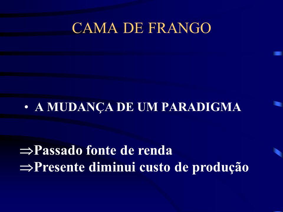 CAMA DE FRANGO Passado fonte de renda