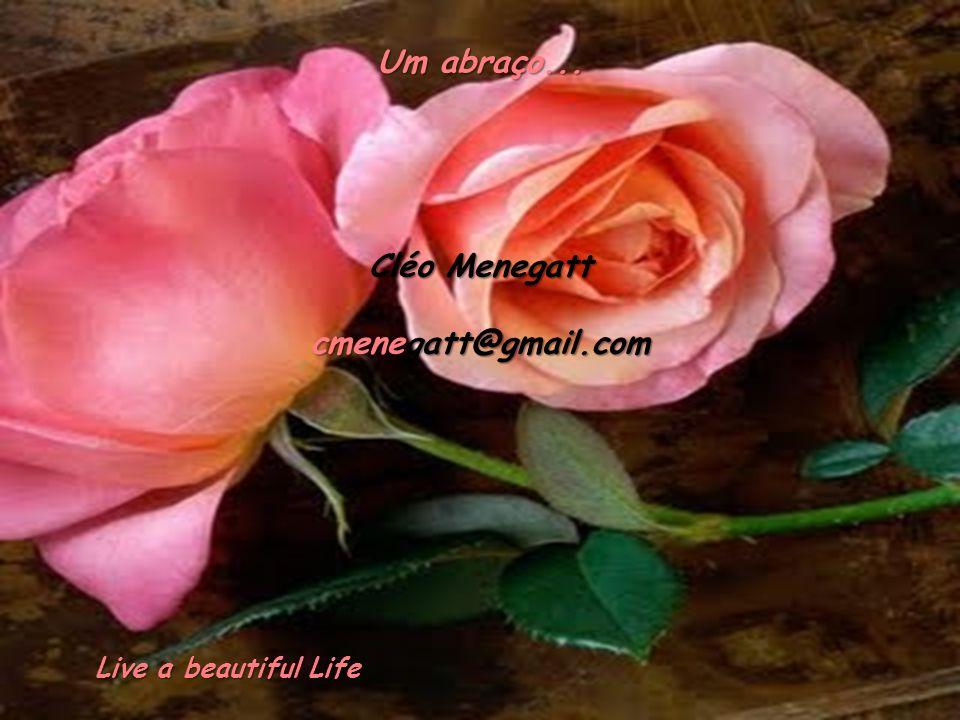 Um abraço... Cléo Menegatt cmenegatt@gmail.com