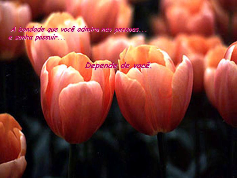 A bondade que você admira nas pessoas... e sonha possuir...