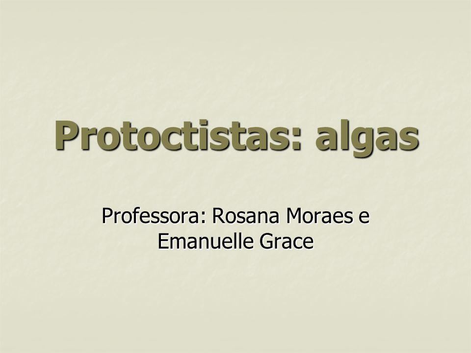 Professora: Rosana Moraes e Emanuelle Grace