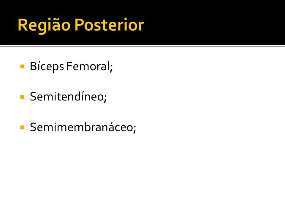 Região Posterior Bíceps Femoral; Semitendíneo; Semimembranáceo;