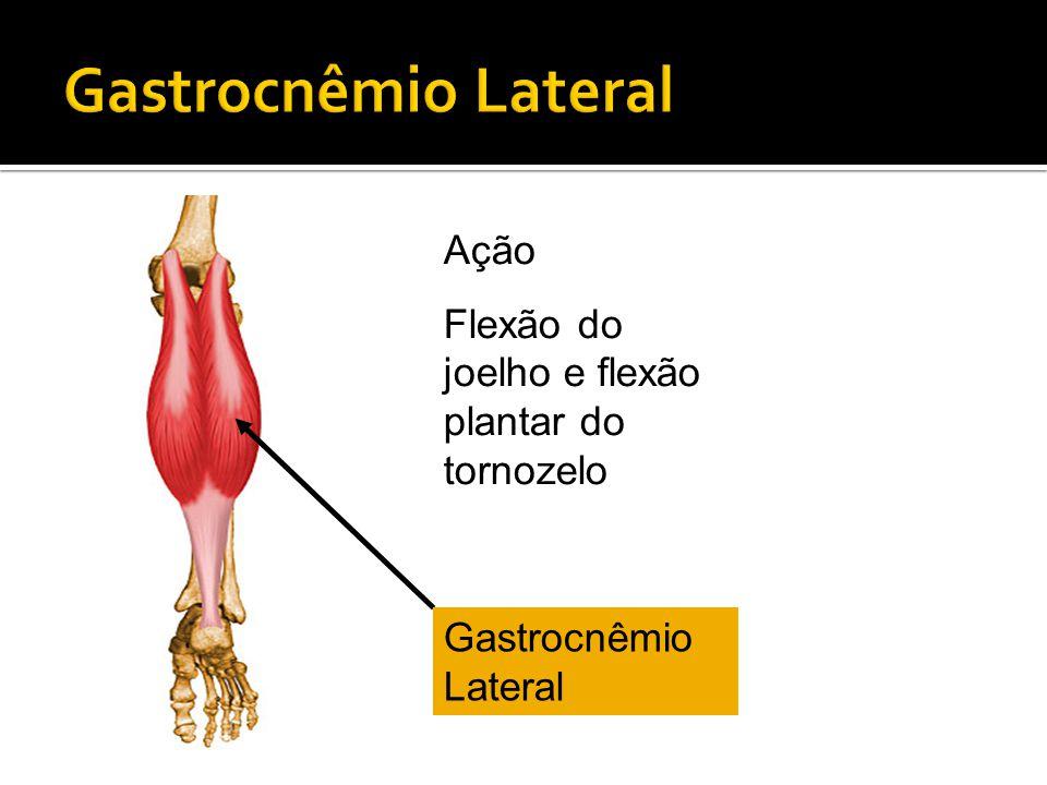 Gastrocnêmio Lateral Ação