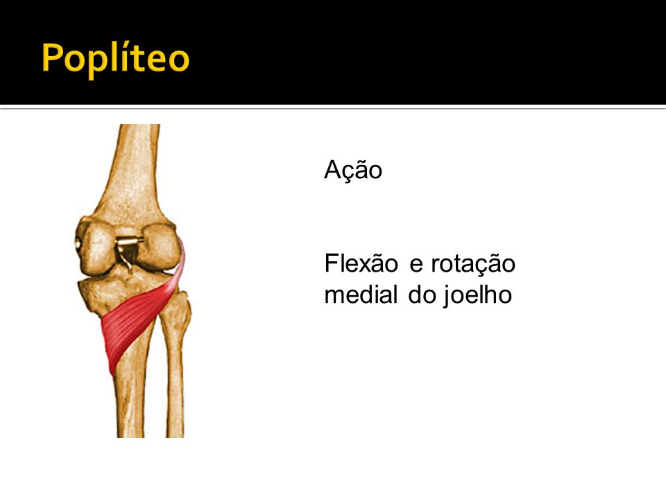 Poplíteo Ação Flexão e rotação medial do joelho