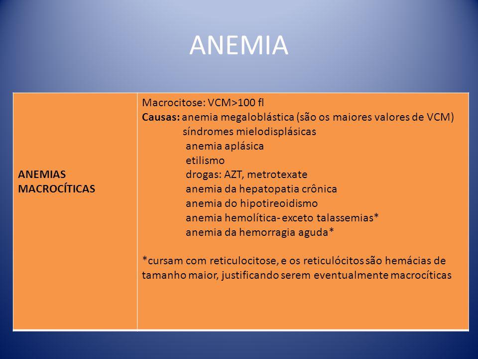 ANEMIA ANEMIAS MACROCÍTICAS Macrocitose: VCM>100 fl