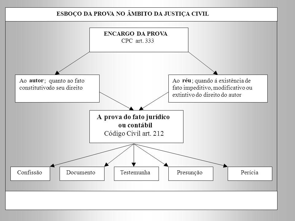 A prova do fato jurídico ou contábil Código Civil art. 212