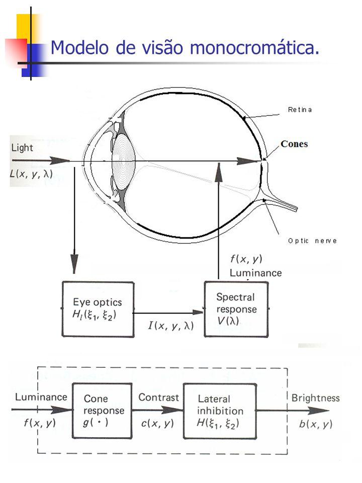 Modelo de visão monocromática.