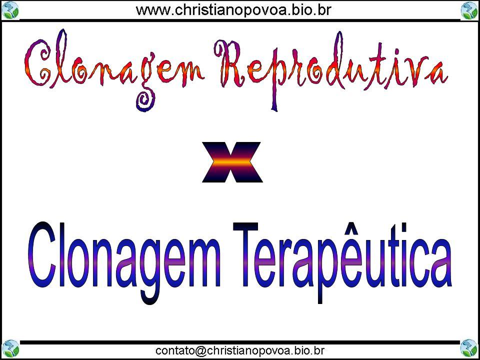 Clonagem Reprodutiva x Clonagem Terapêutica