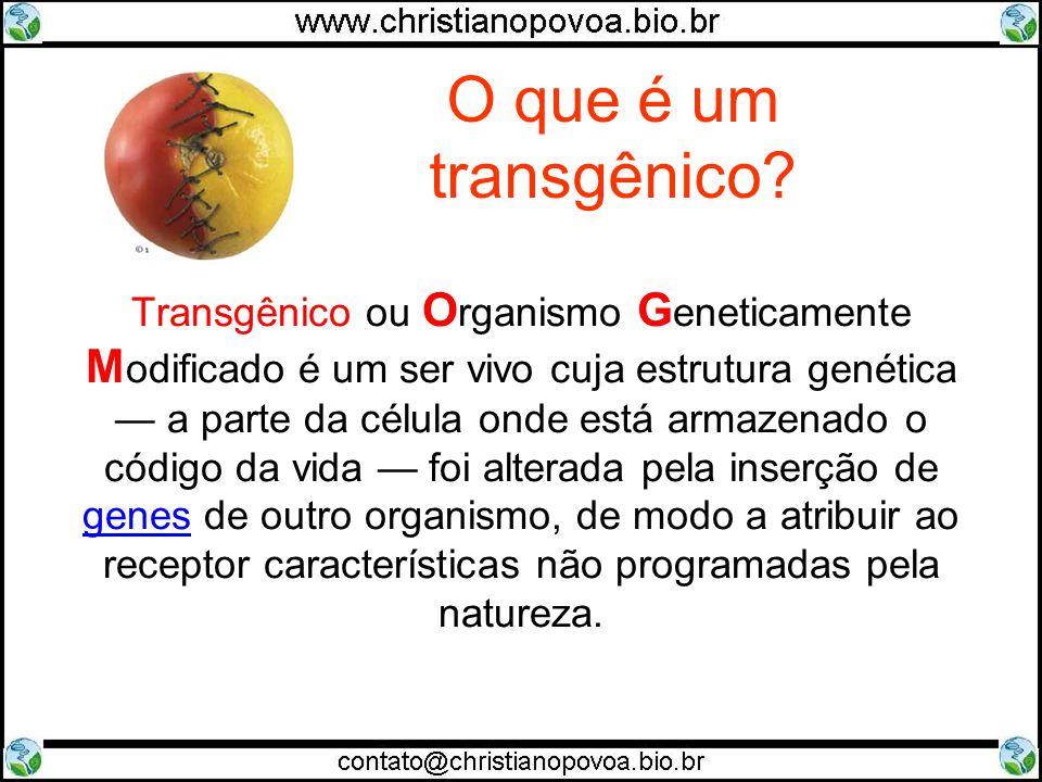 O que é um transgênico