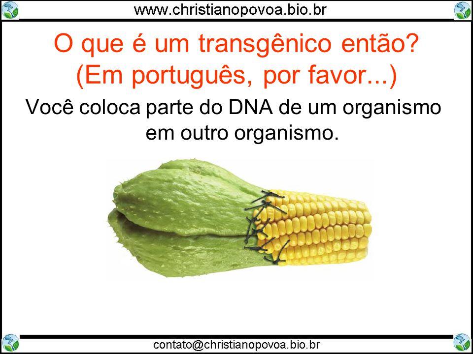 O que é um transgênico então (Em português, por favor...)