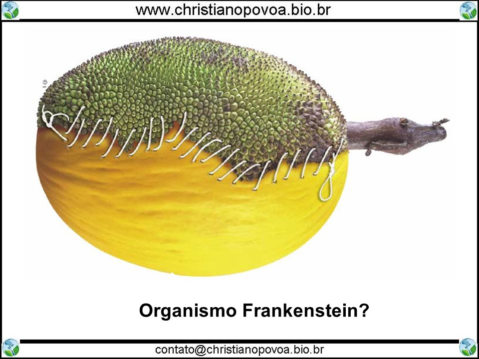 Organismo Frankenstein