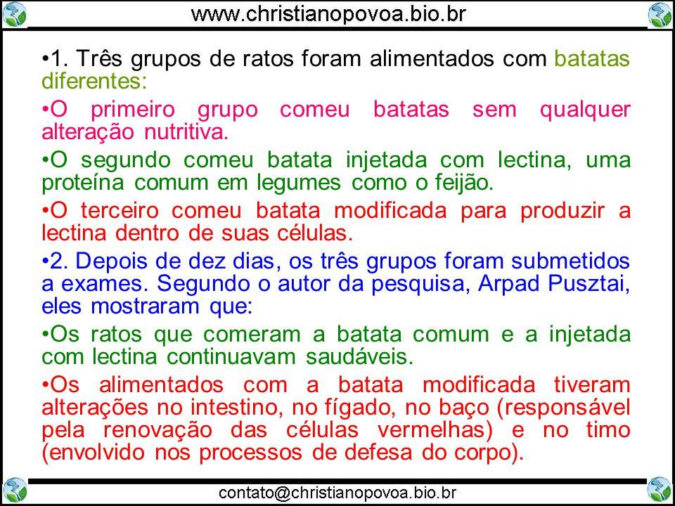 1. Três grupos de ratos foram alimentados com batatas diferentes: