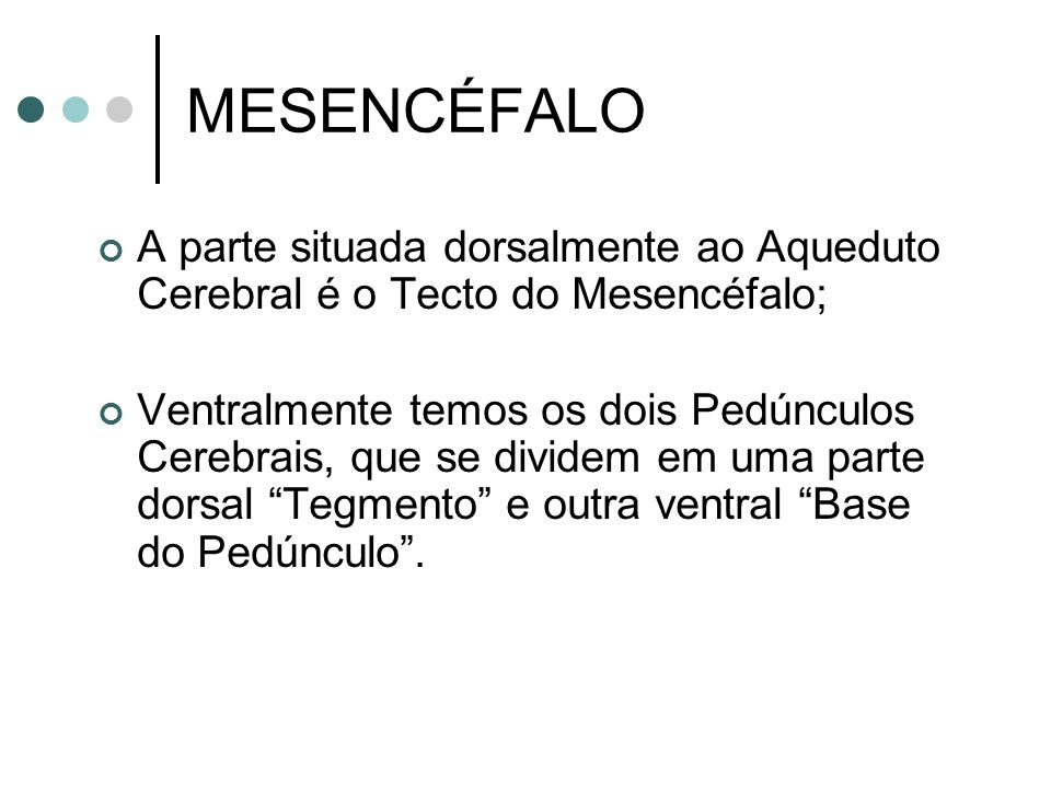 MESENCÉFALO A parte situada dorsalmente ao Aqueduto Cerebral é o Tecto do Mesencéfalo;