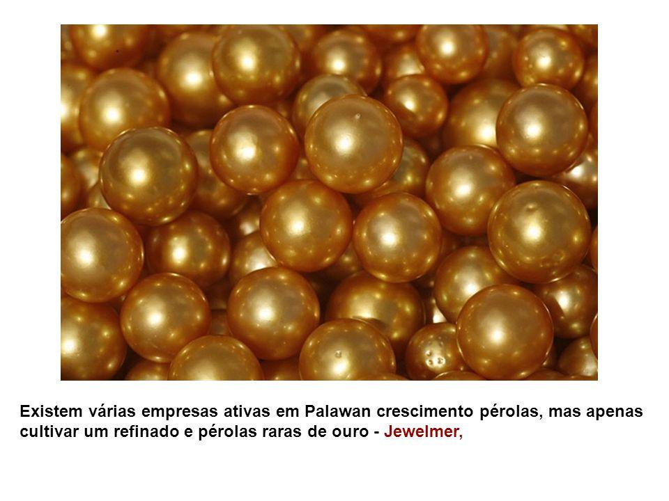 Existem várias empresas ativas em Palawan crescimento pérolas, mas apenas cultivar um refinado e pérolas raras de ouro - Jewelmer,